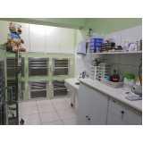 clínica veterinária e pet shop Santo Amaro