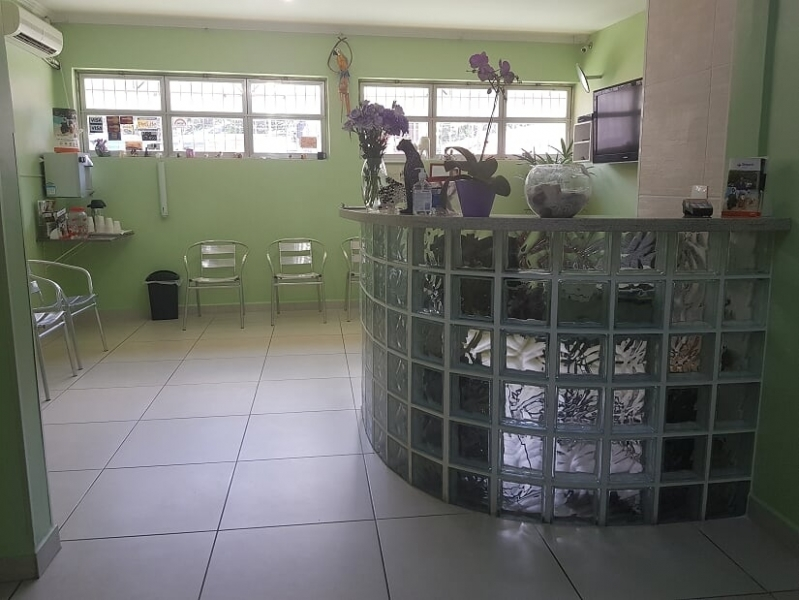 Clínica de Veterinário 24 Horas Taboão da Serra - Veterinário 24hs