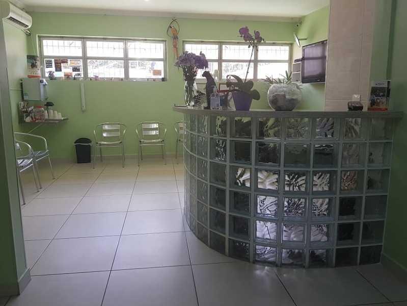 Clínica de Veterinário 24hs Cotia - Veterinário 24hrs