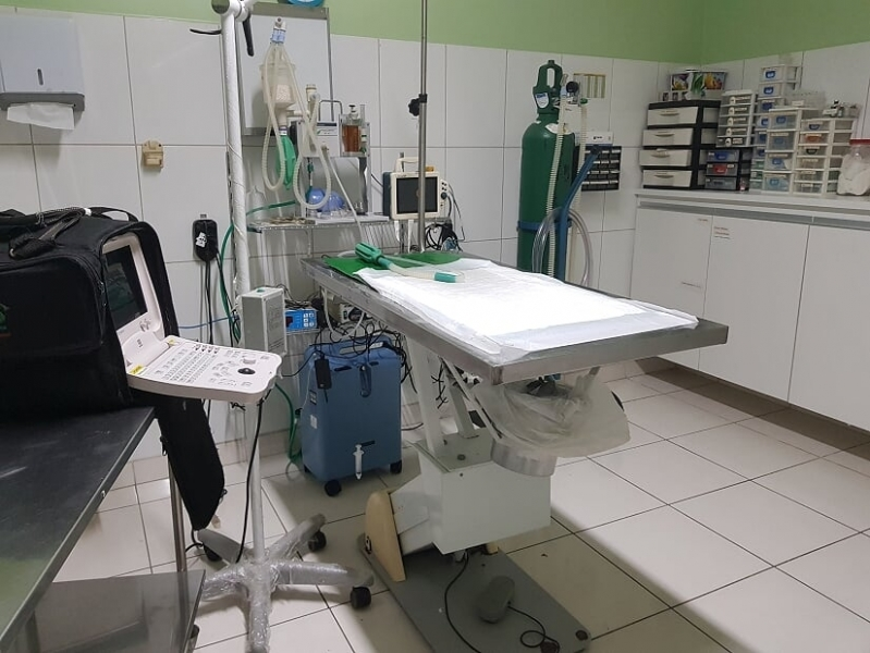 Clínica de Veterinário Emergência 24 Horas Santo Amaro - Veterinária 24h