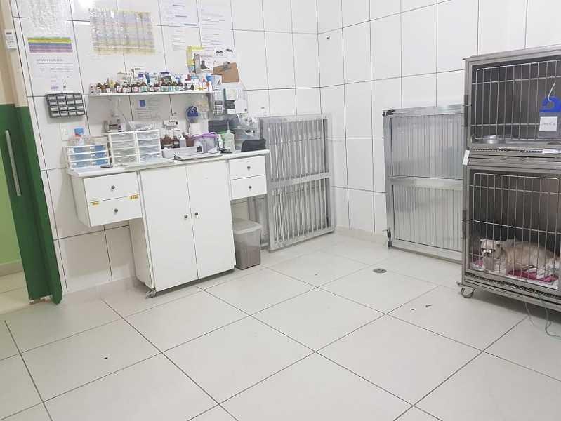 Clínicas Veterinária 24h Morumbi - Veterinária 24hrs