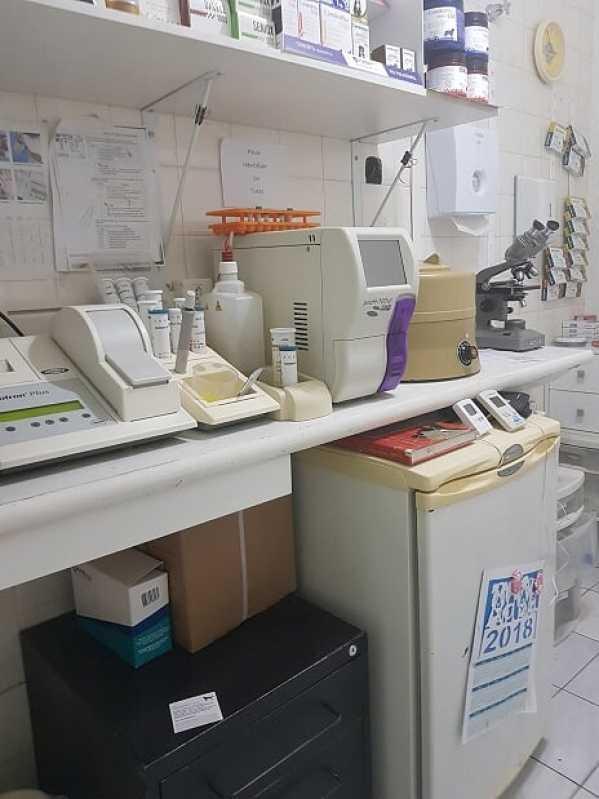 Diária de Internação Veterinária Valor Itaim Bibi - Internação para Gatos