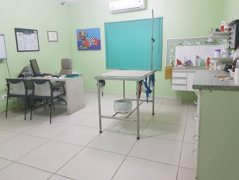 Exame Citológico Veterinário Vila Sônia - Exame Ultrassom Veterinário