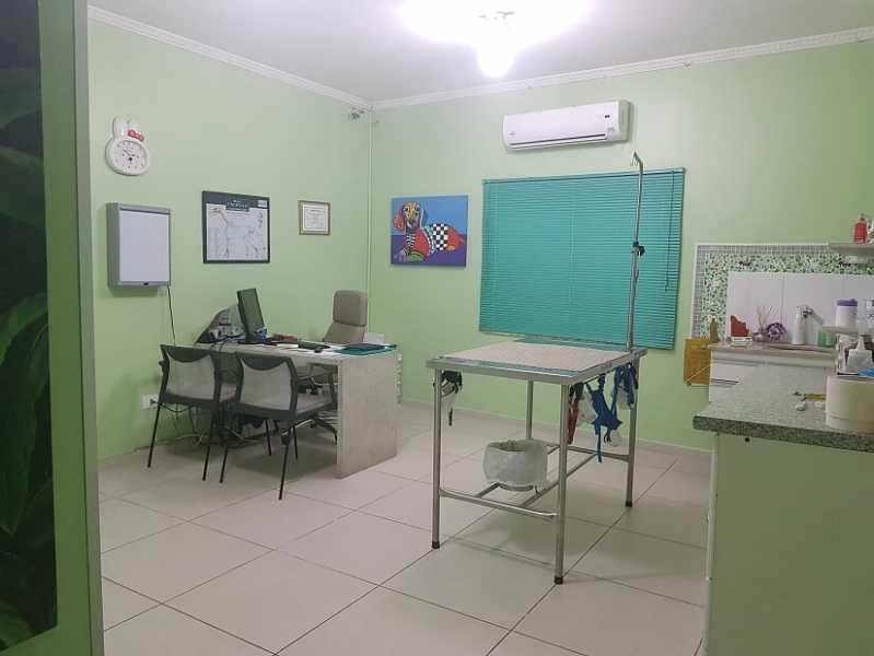 Exame Otológico Veterinário Taboão da Serra - Exame Ultrassom Veterinário