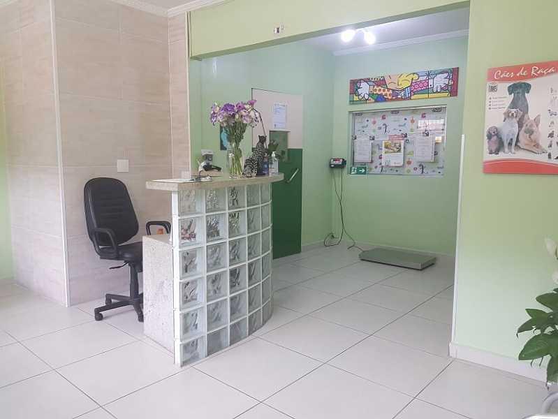 Hospitais para Animais Jaguaré - Hospital Veterinário Mais Próximo