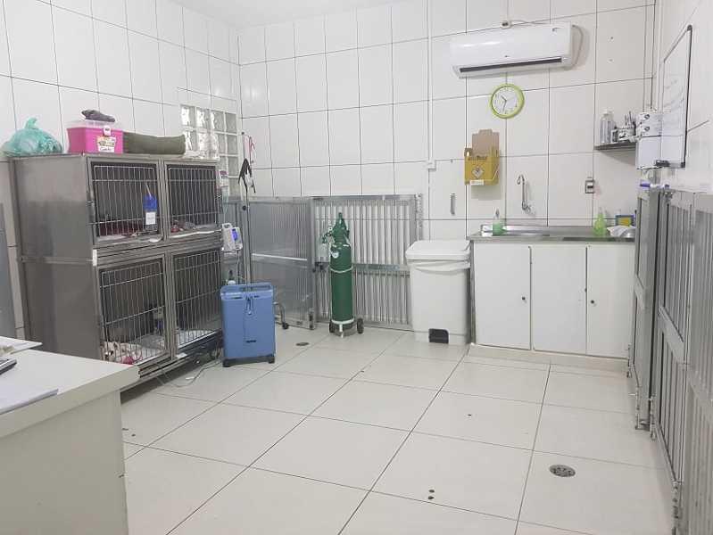 Hospitais para Cachorro 24 Horas Rio Pequeno - Hospital Veterinário