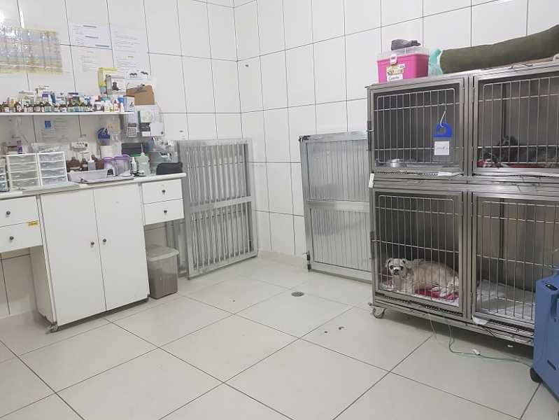 Hospital Veterinário 24hr Jardim Bonfiglioli - Hospital Veterinário 24hs