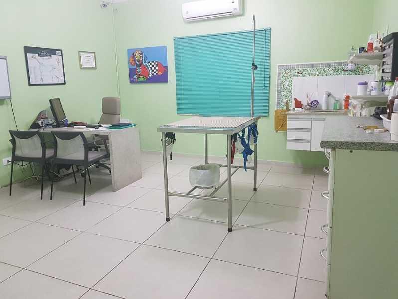 Onde Encontrar Centro Clínico Veterinário Vila Olímpia - Clínica Veterinária Oftalmologia