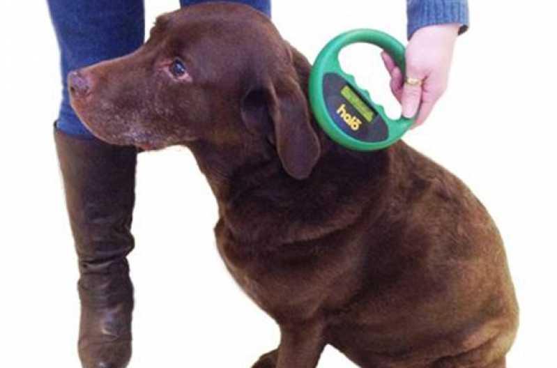 Onde Encontro Aplicação de Microchip Jardim América - Aplicação de Microchip em Cães