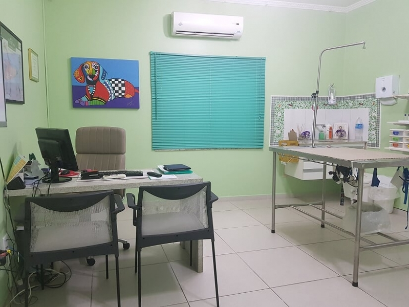 Onde Encontro Atendimento Veterinário Pinheiros - Veterinário de Animais Domésticos
