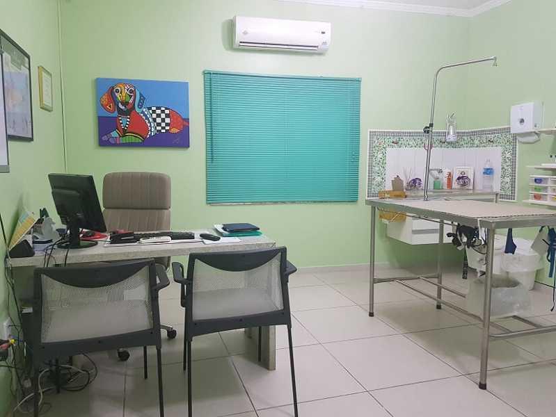 Onde Encontro Diária de Internação Veterinária Santo Amaro - Animais Internação
