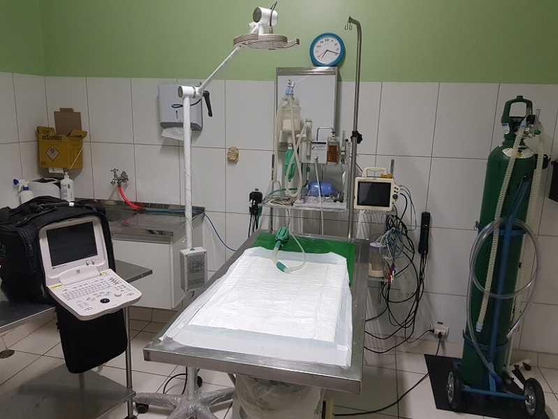Onde Encontro Exame Oftalmológico Veterinário Rio Pequeno - Exame Ultrassom Veterinário
