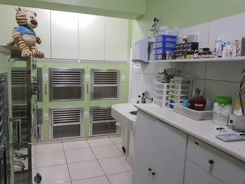 Onde Encontro Hospital para Animais Jardim Pirajussara - Hospital Veterinário Mais Próximo