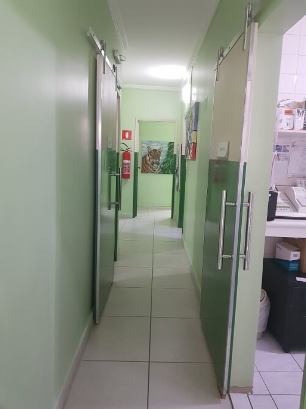 Onde Encontro Veterinário de Animais Domésticos Jardim Bonfiglioli - Veterinário para Animais Domésticos