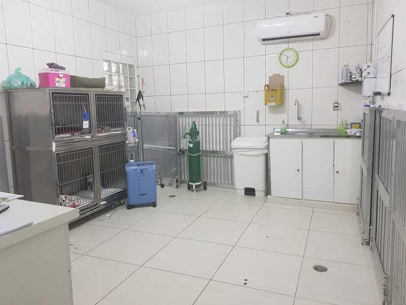 Onde Fica Hospital Pet 24 Horas Morumbi - Hospital Veterinário 24hs