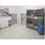clínica de veterinária 24 horas Santo Amaro