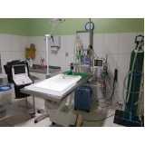 clínica de veterinária 24hs Santo Amaro