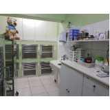 clínica veterinária animais Taboão da Serra