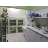 clínica veterinária cirurgia Jardim Maria Rosa