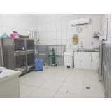 clínicas de animais domésticos Osasco