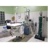 clínica de animais domésticos