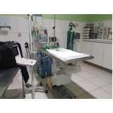 clínica veterinária de 24h