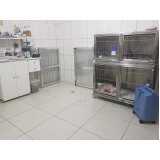 exame parasitológico veterinário Cidade Jardim