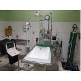 exame de ultrassom veterinário