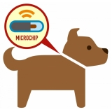onde encontro aplicação de microchip em cachorros Brooklin