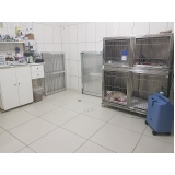 onde encontro clínica de internação para animais Jardim América